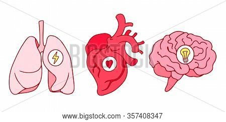 Line Art Style Drawing, Stickers Design Of Lungs, Hearts And Brains Icons