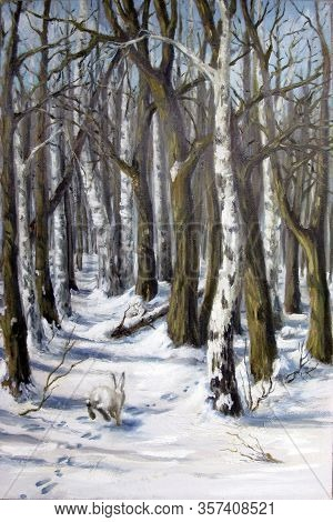 Winter Landscape With A Hare In The Forest. Birches And Other Trees. Hare Tracks In The Snow And A F
