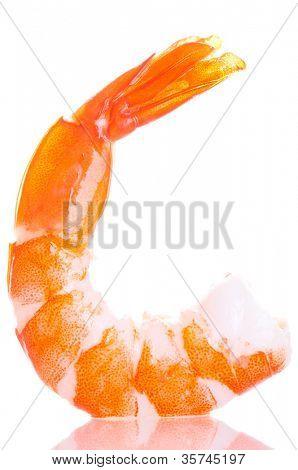 Fresh shrimps. Isolation on the white