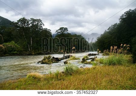 Clinton River Along The Milford Track, Fiordland, New Zealand