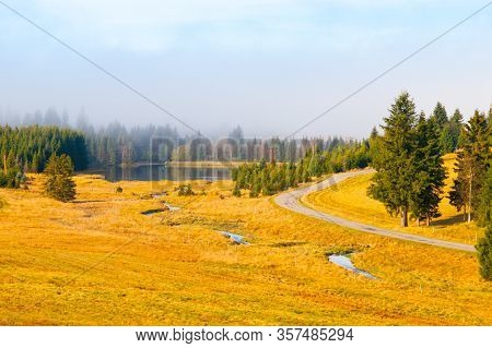 Autumn Landscape Sunny And Hazy Morning With Two Spruces, Near Bozi Dar, Krusne Mountains, Czech Rep