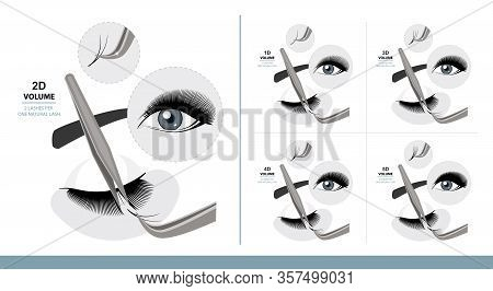 Volume Eyelash Extension For Most Attractive Look. Woman Eye With Long Thick Eyelashes. 1d - 5d Volu