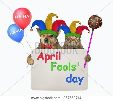 The Dog And The Cat In Jester Hats Are Holding Multi-colored Balloons, а Chocolate Cake Pop And A Pa