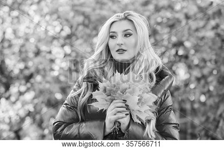 Woman Walk In Autumn Park. Girl Makeup Dreamy Face Hold Bunch Maple Leaves. Lady Posing With Leaves