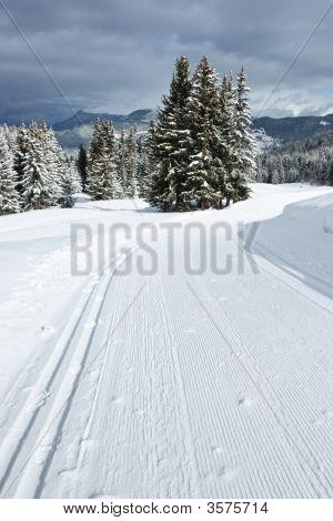 Cross Country Ski Track