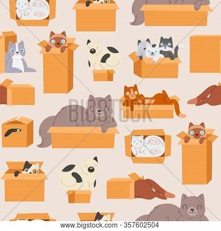 Cats In Cardboard Transportation Boxes Cartoon Seamless Pattern Vector Illustration. Cute Kittens An