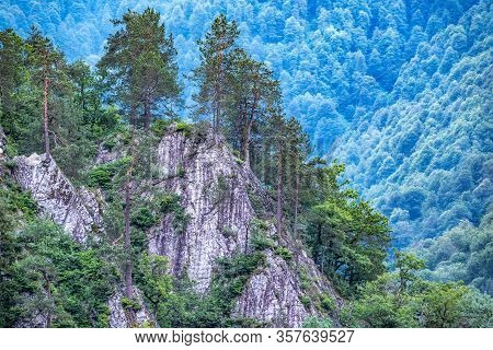 Stone Cliff With Pines Growing On It In Front Of A Green Mountainside. Green Mountain Forest In Summ