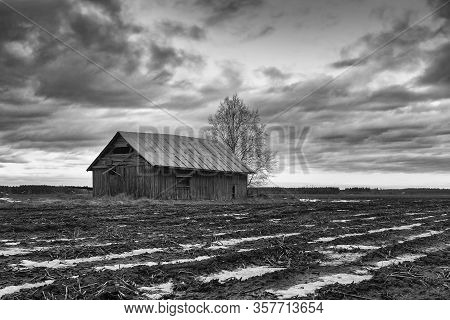 An Abandoned Barn House On The Fields Of The Rural Finland. The Fields Have Some Snow Still.