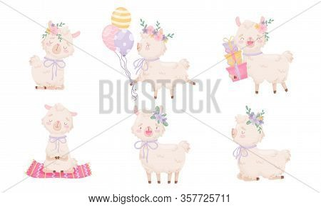 Cartoon Funny Alpaca Or Lama Character Wearing Floral Wreath Carrying Gift Boxes And Sitting In Yoga