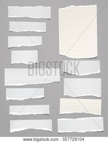 Torn Of Vertical White, Lined Note, Notebook Paper Strips, Pieces Stuck On Grey Background. Vector I