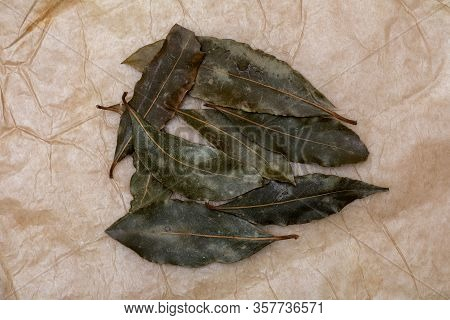 Laurel Leaf Group. On A Beautiful Rustic Vanilla Background. Top View