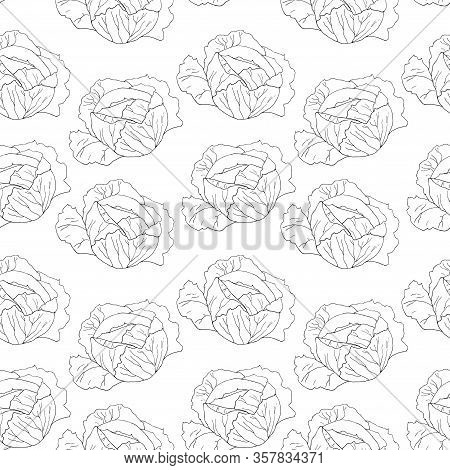 Seamless Pattern With Cabbage. Linear Drawing Of Vegetable. Art Can Be Used For Packaging Design Ele