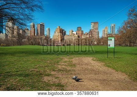 Empty Central Park with few pedestrians as the result of COVID-19 coronavirus pandemic outbreak in New York City.