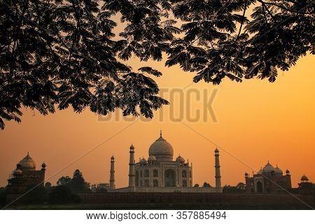 View Of Taj Mahal Framed By A Tree Crown At Sunset, Agra, Uttar Pradesh, India. Taj Mahal Was Design