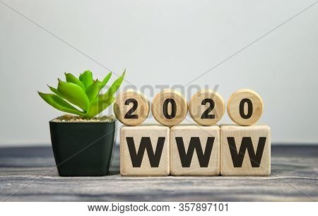 2020 Www - Financial Concept. Wooden Cubes And Flower In A Pot.