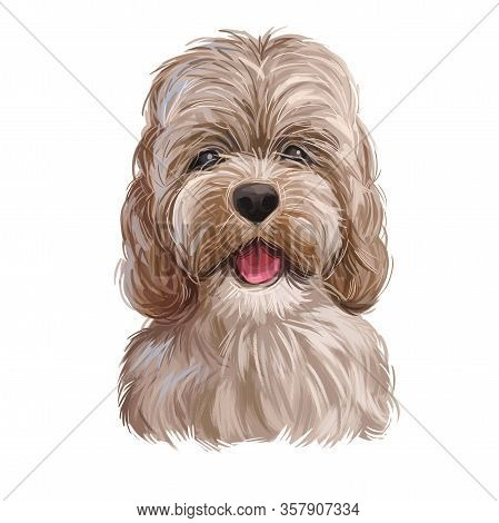 Golden Cockapoo Dog Digital Art Illustration Of Cute Canine Animal. Mixed-breed Dog Cross Between Am