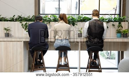 People Sitting At A Desk And Working On The Computer, Back View. Workplace, Make Money Online, E-bus