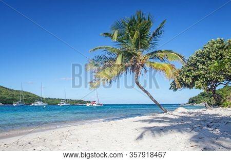 Petit Rameau Carabbean tropical Island Beach Coast, catamaran sailing concept