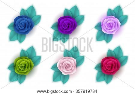 Beautiful rose flower in garden. Rose flower background. Lovely rose. Roses in tropical garden. Colourful roses flower. close up of rose flower. Roses flower bouquet. Garden rose. Red rose, rose vector for Web sites, signs, Mobile, apps, UI.