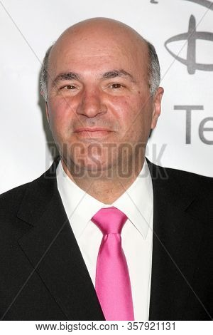 LOS ANGELES - JAN 10:  Kevin O'Leary at the ABC TCA Party Winter 2012 at the Langham Huntington Hotel on January 10, 2012 in Pasadena, CA