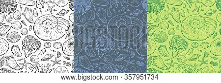 Hand Draw Seanless Pattern With Sea Shells, Ammonite, Stars Corals And Pearls Different Shapes. For