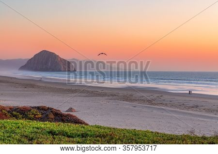 Beautiful  Panoramic View Of Morro Bay And Morro Rock At Sunset. California. Usa