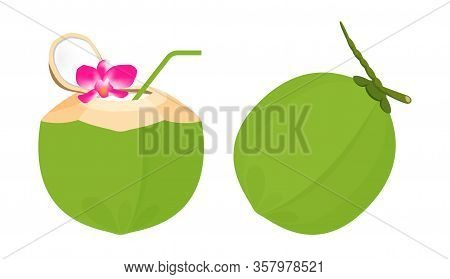 Coconut Juice Fresh With Plumeria Flower And Straw Tube Nature, Coconut Green Young Half Cut For Hea