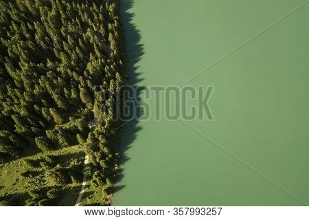 Top view of waterside of lake shore with forest in the French Alps