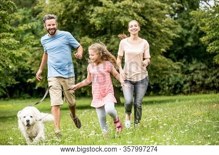 Family with daughter and dog play together in the garden in summer