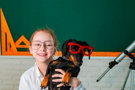 Funny Puppy In Glasses. Child Girl With Puppi. Happy Smiling Kid Go Back To School. Funny Education.