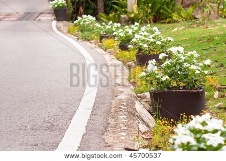 Road Or Pathway  In The Garden And Flower Pots White.