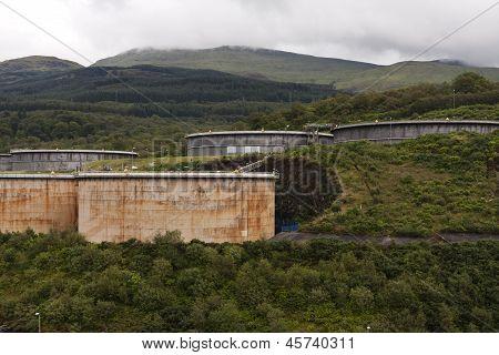 Oil Storage in Nature