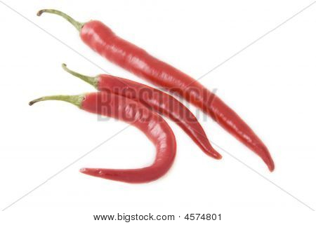 Ripe Chili Pepper
