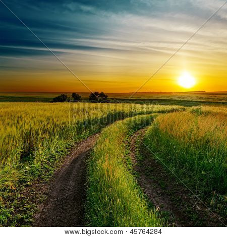 good sunset and dirty road in green spring field
