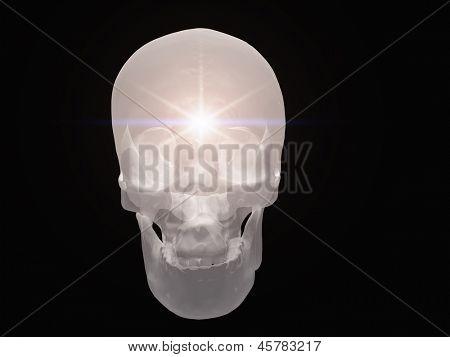 Light radiates from semitransparent skull