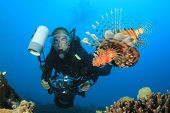 Underwater Photographer Scuba Dives with Lionfish poster