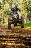 Quad rider jumping on a forest trail. poster