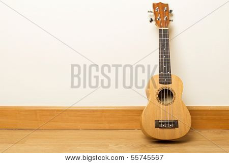 Ukuele on the floor