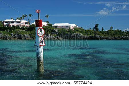 Caution, Turtle Sign Landscape