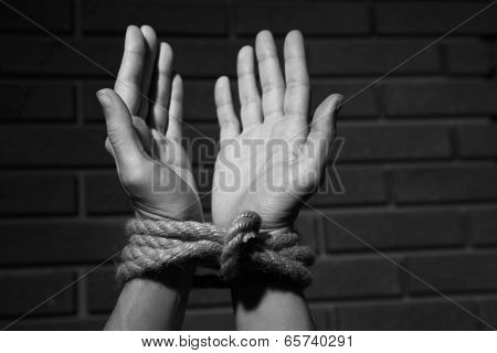 Tied hands on dark background