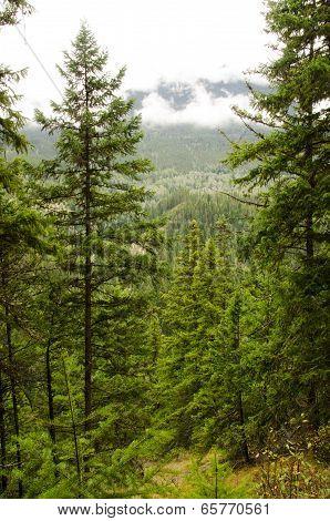 Mount Terry Fox Hidden In The Clouds