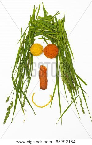 Funny Man From Grass, Threads And Carrot