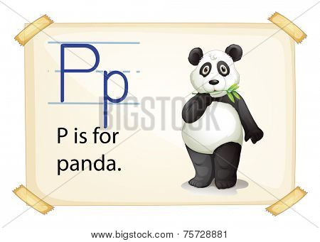 A letter P for panda on a white background