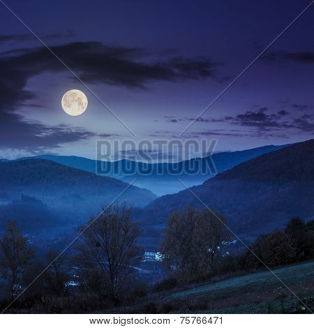 Village On Hillside Meadow With Forest In Mountain At Night