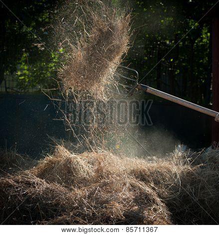 Hayfork And Hay