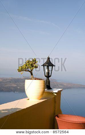 Still Life Scene With Flower Pot Santorini