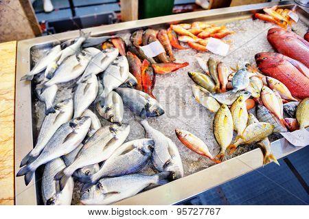 Fresh Fish On Ice. Fish Market On Madeira Island