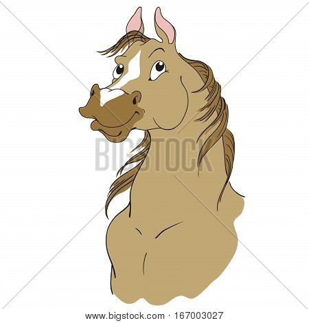 Horse cartoon character. Buckskin suit. Horse head isolated on a white background. Vector.