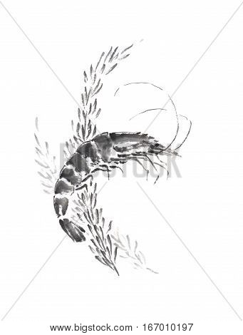 Shrimp and weed Japanese style original sumi-e ink painting. Great for greeting cards or texture design.