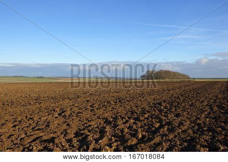 Plow Soil And Copse